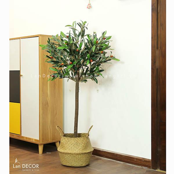 Cây Oliu phong cách Bắc Âu hiện đại Lan Decor (120cm) - LC2716