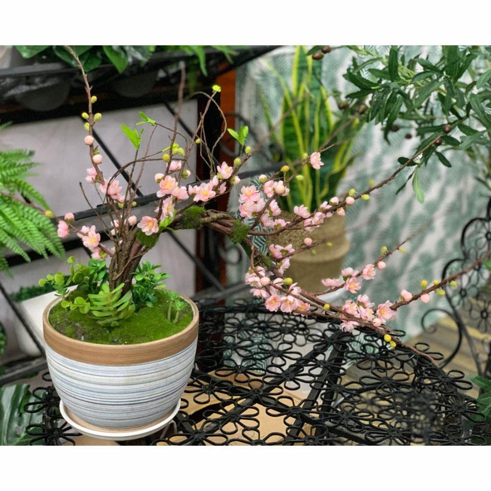 Bình hoa đào bonsai - BH784-2