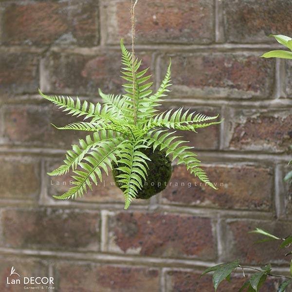 Giỏ treo cây dương xỉ trang trí nhà đẹp Lan Decor - CC261
