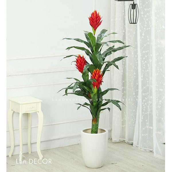 Cây phát lộc hoa 160cm - LC2103