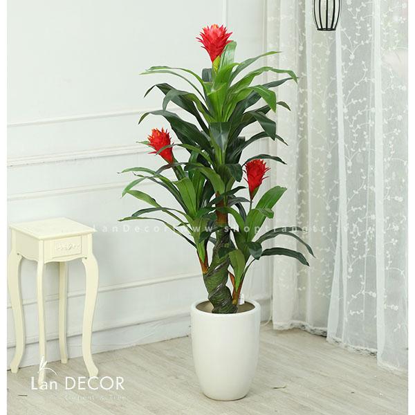 Cây phát lộc hoa 150cm - LC2593