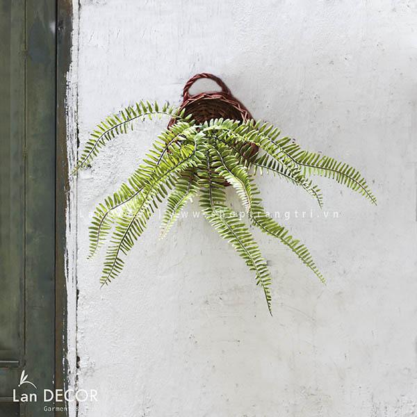 Giỏ dương xỉ treo tường trang trí nhà hiện đại Lan Decor - CC275