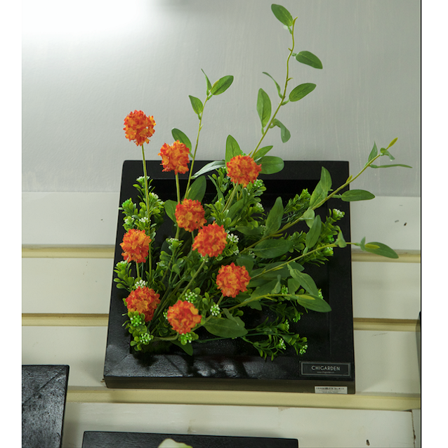 Khung tranh hoa bồ công anh - KTC171