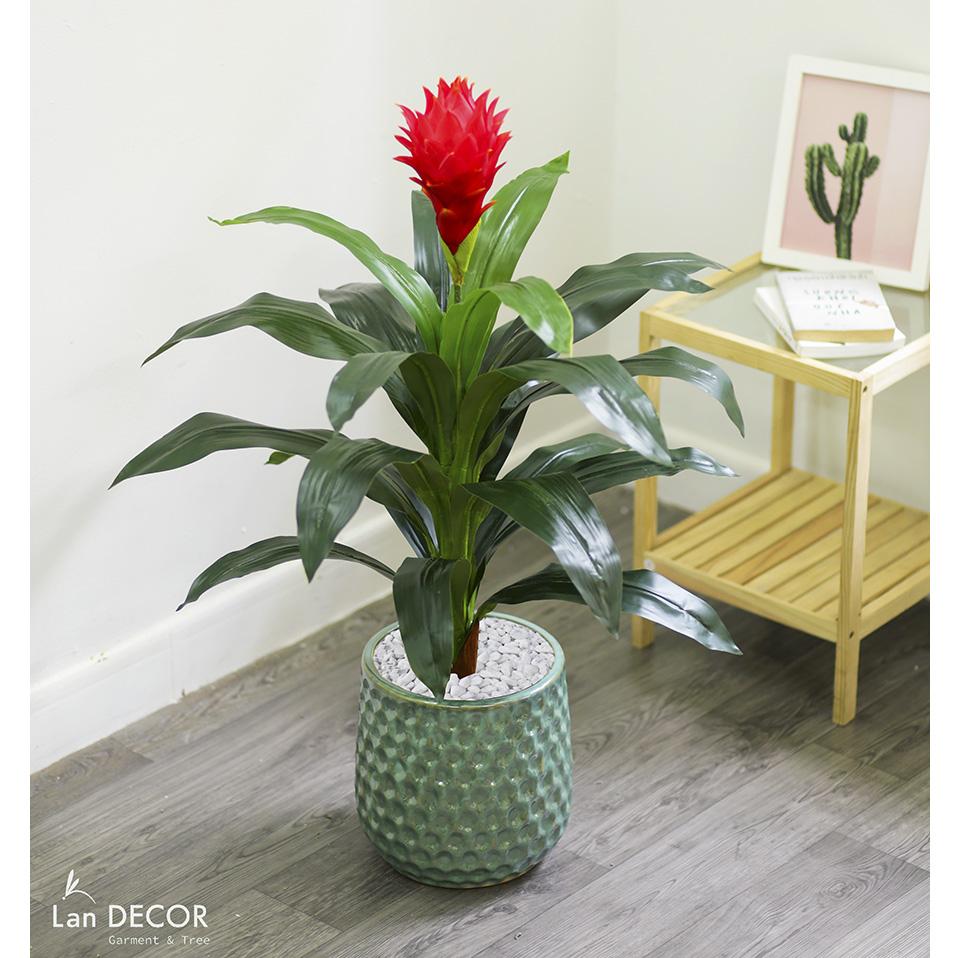 Cây phát lộc hoa đỏ trang trí nhà đẹp 90cm - LC2431