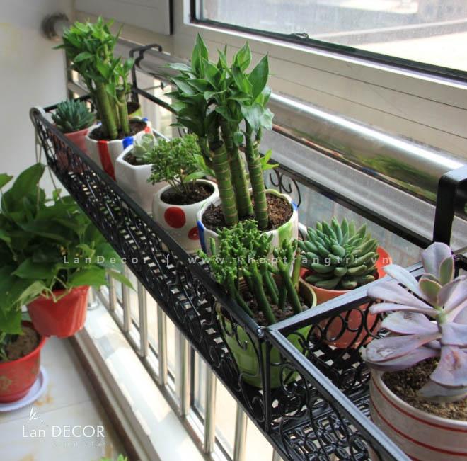 Giá sắt trồng cây trang trí ban công, quán cafe - KS014