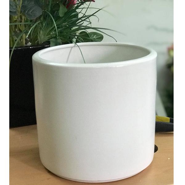 BG161 - Chậu gốm sứ trụ tròn trắng trồng cây (19 cm)