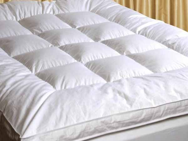 Luxury Goose Feather & Down Mattress Topper Matress Cover ...