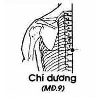 Chí Dương