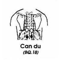 Can Du