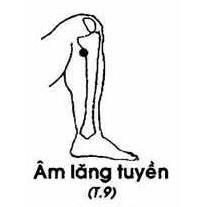 Huyệt Âm Lăng Tuyền