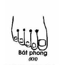 Bát Phong