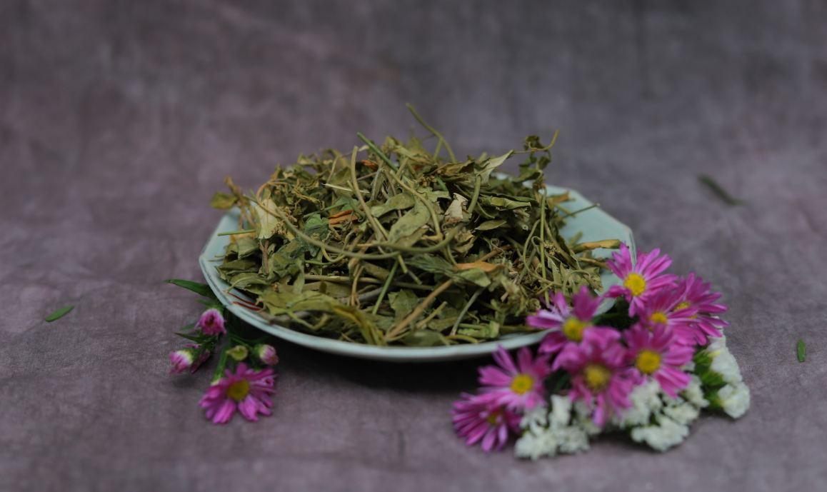 Tác dụng chữa bệnh của lá thìa canh