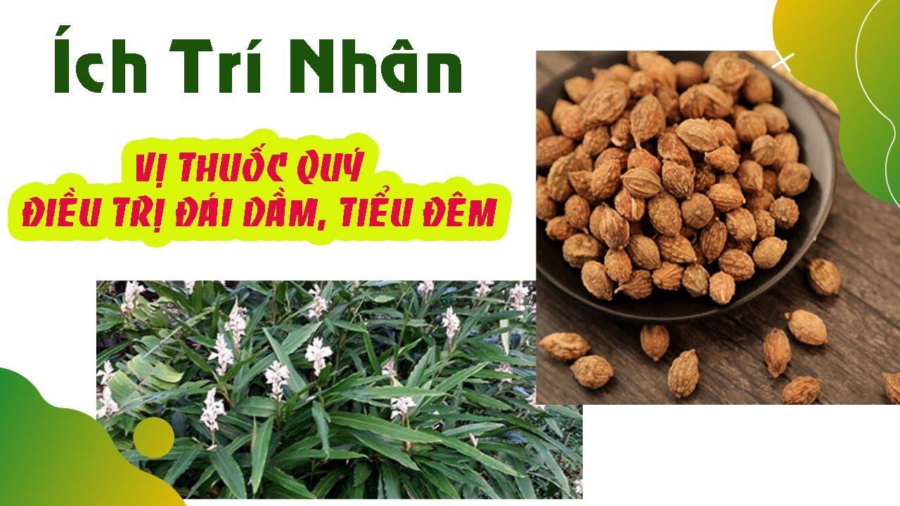 ich-tri-nhan-vi-thuoc-bo-than