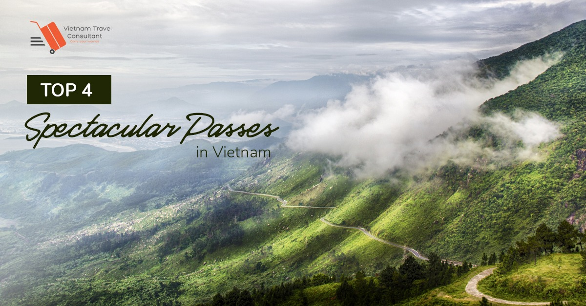 [Backpacking Time] Conquering Top 4 Spectacular Passes of Northern Vietnam
