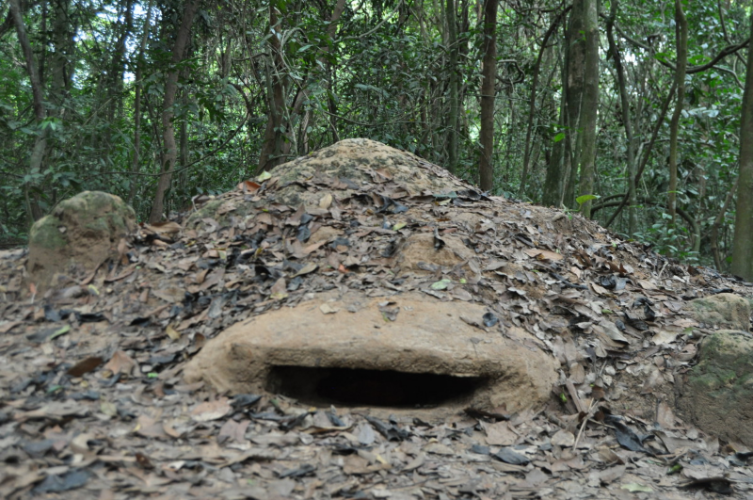 PRIVATE HCMC TOUR – CU CHI UNDERGROUND TUNNELS
