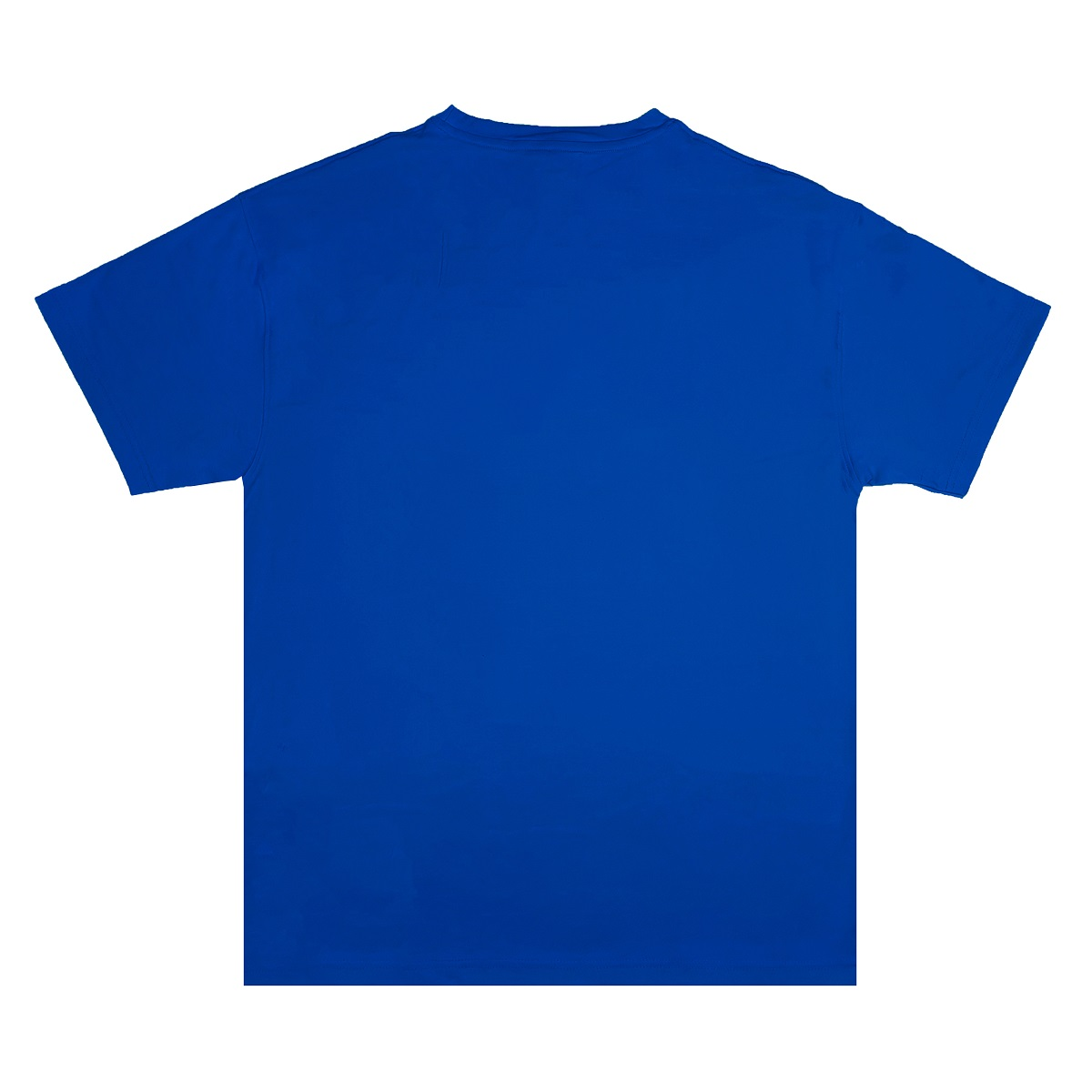 DSW Tee Basic New Logo-Blue
