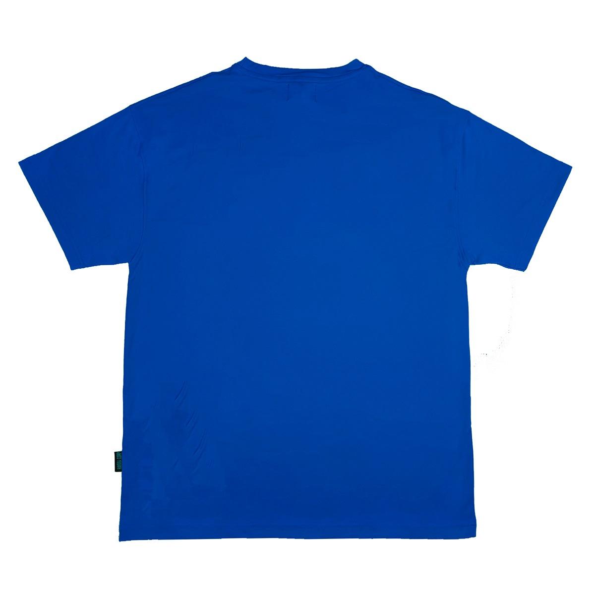 DSW TEE BASIC LOGO - BLUE