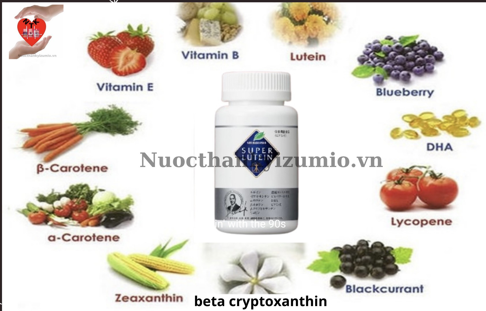 phytochemicals-hoa-hoc-thuc-vat-hay-hoa-chat-thuc-vat-trong-super-lutein-va-supe