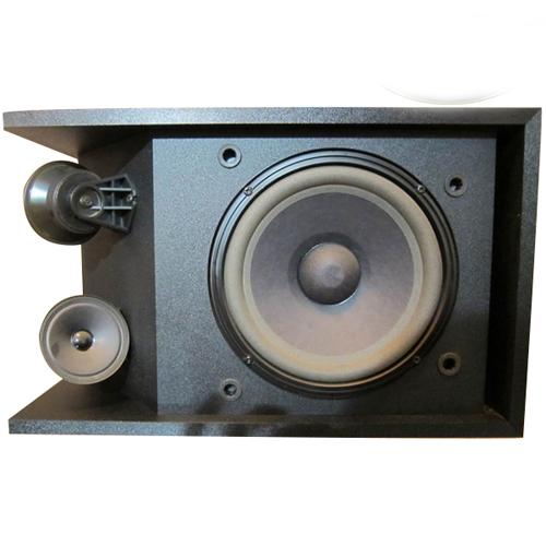 Loa Bose 301series III
