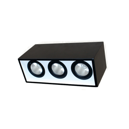 ĐÈN LED DOWNLIGHT GẮN NỔI CHIẾU SÂU 3x10W (DFB3101)
