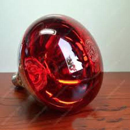 Đèn úm gà hồng ngoại
