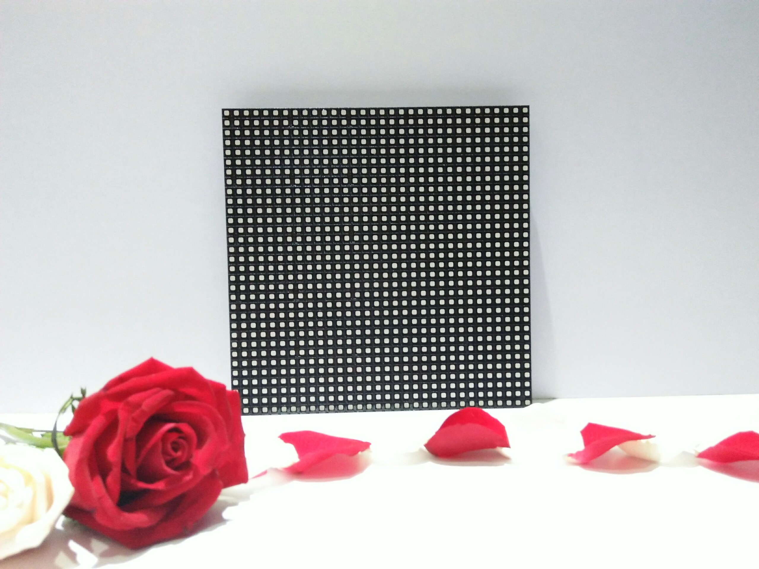 Module led P6 full color outdoor Cailiang
