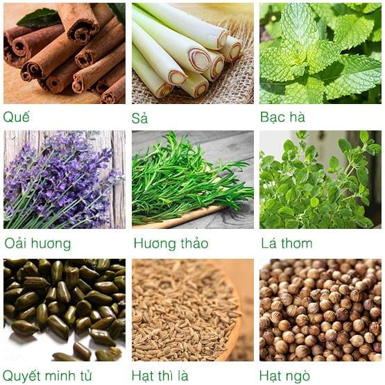 Thành phần túi chườm bụng ATZ Organic