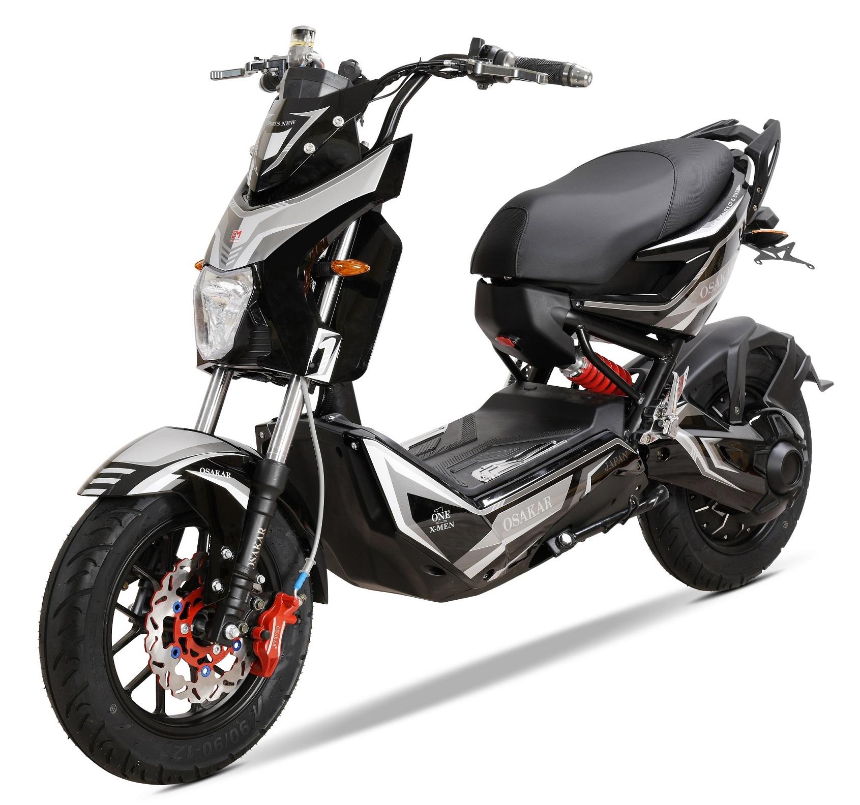 Xe đạp điện xmen 2019