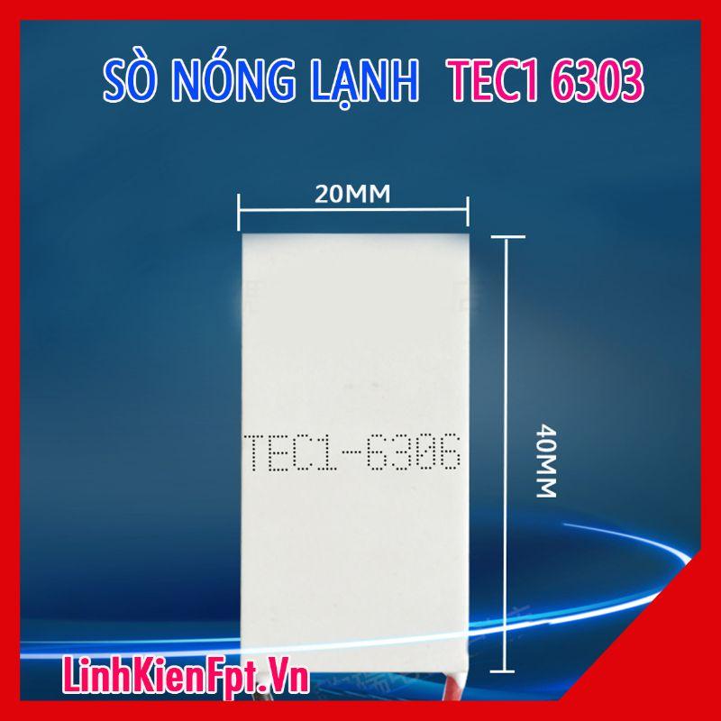 Sò nóng lạnh TES1-6306  40x20MM