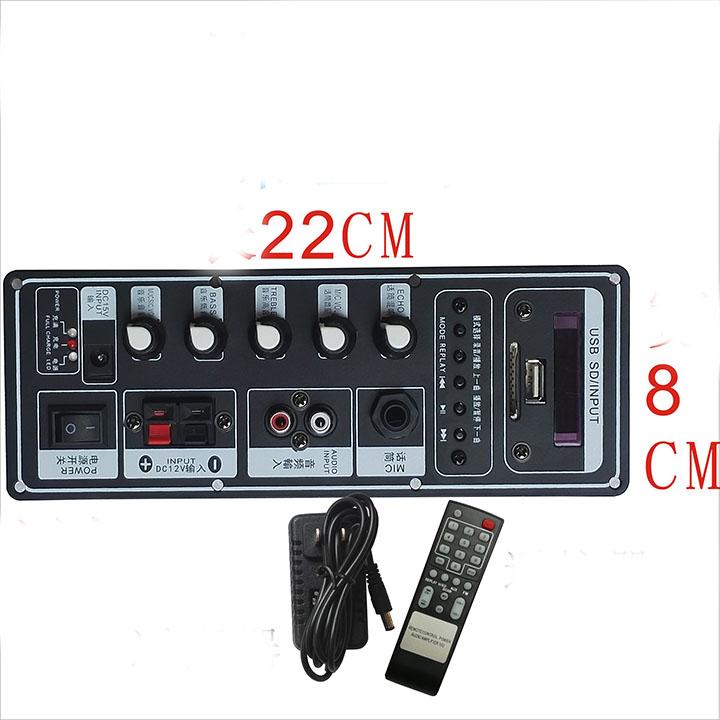 Mạch loa kéo Karaoke Bluetooth 50 -100W Có Điều Khiển