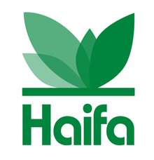 Haifa_Group