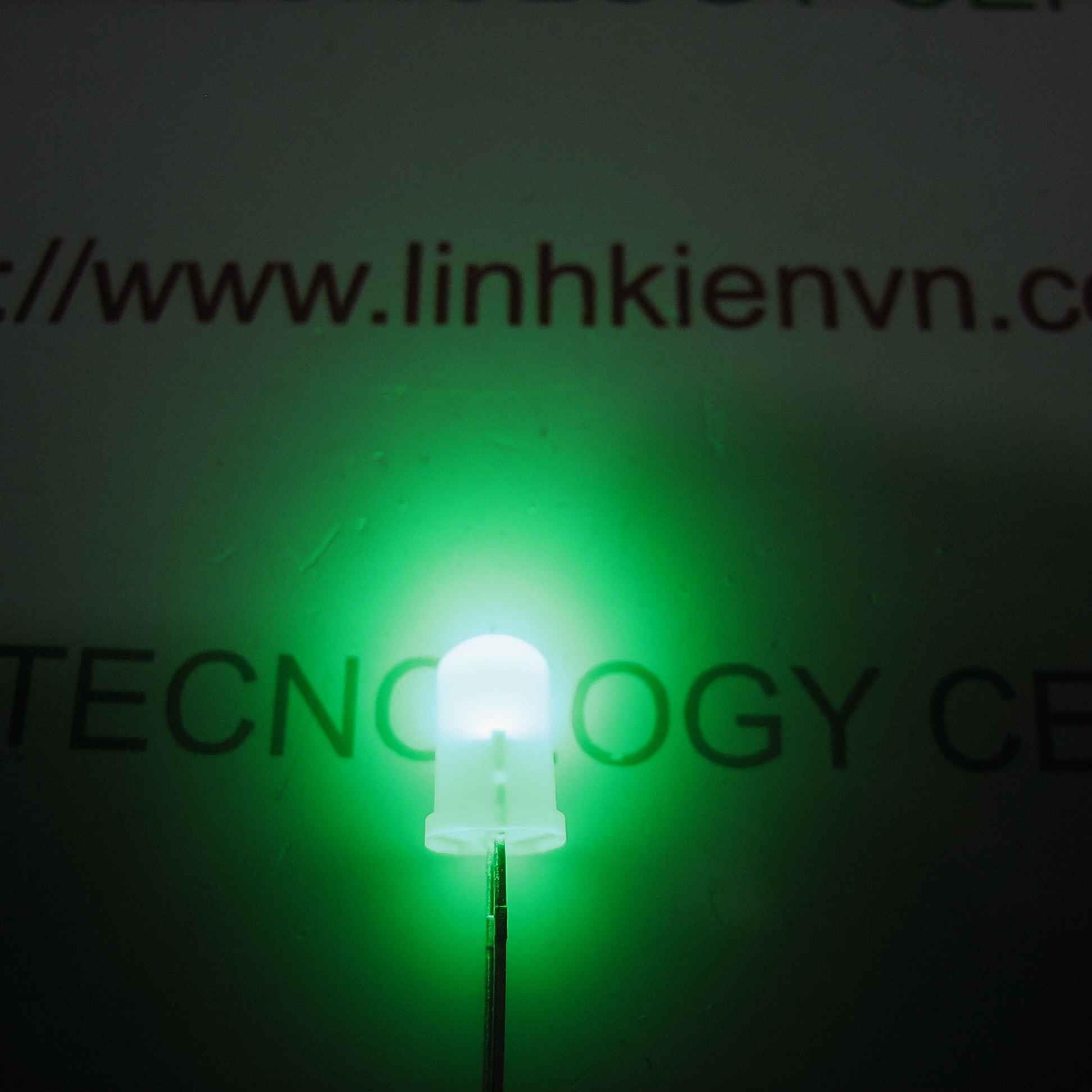Led siêu sáng đục 5mm - Mầu xanh lá (10 chiếc) - A5H19 (KA2H1)