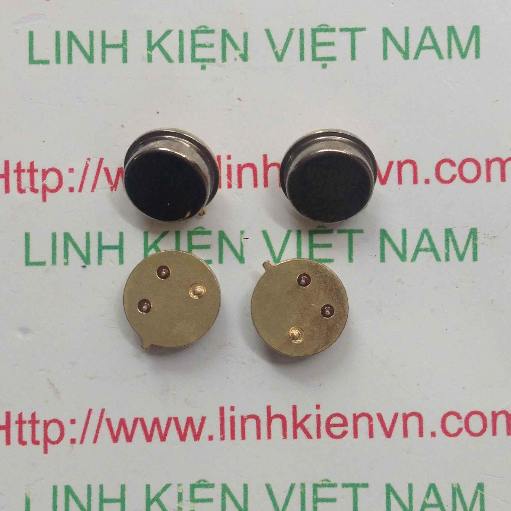 Thạch Anh cắm 433Mhz - C1H1