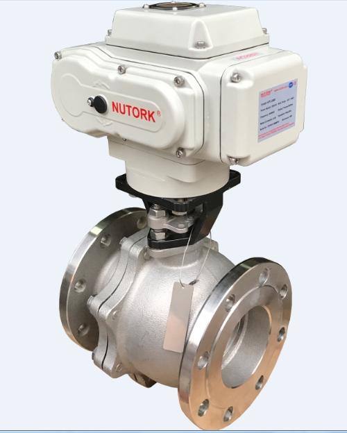 Van bi điều khiển điện Jis10k - NTE Nutork USA
