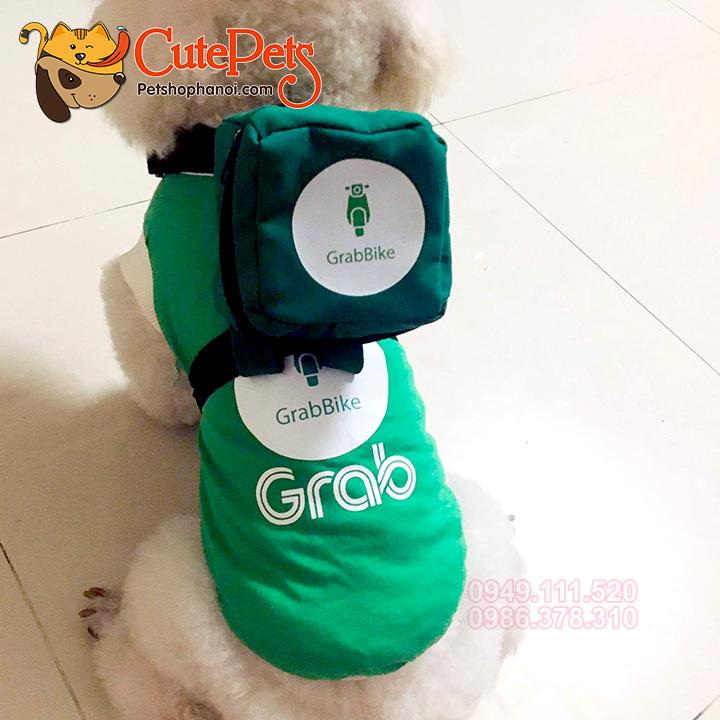 Quần áo phụ kiện cho chó mèo