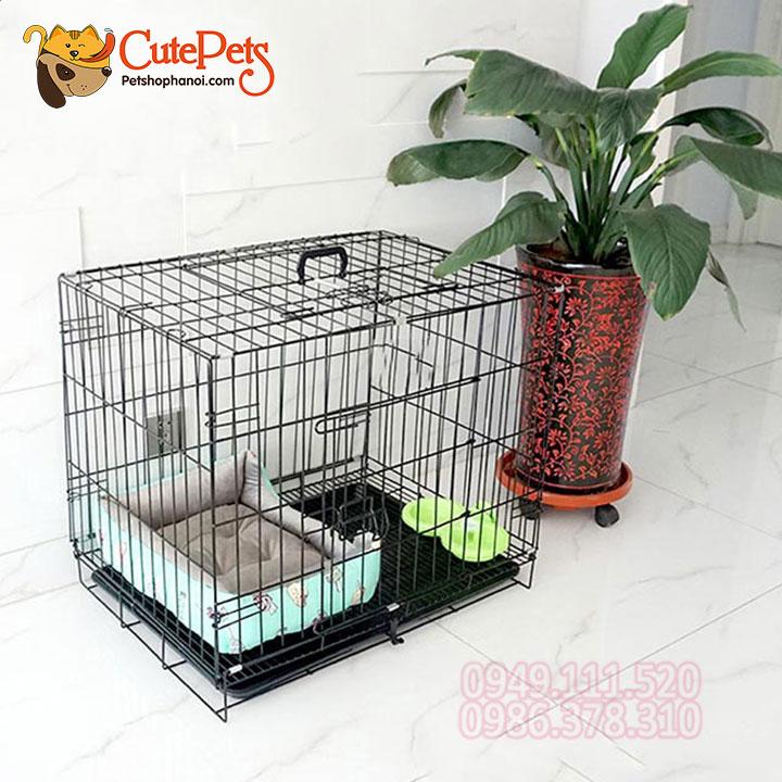 Chuồng Lồng Đệm cho chó mèo chăm sóc thú cưng