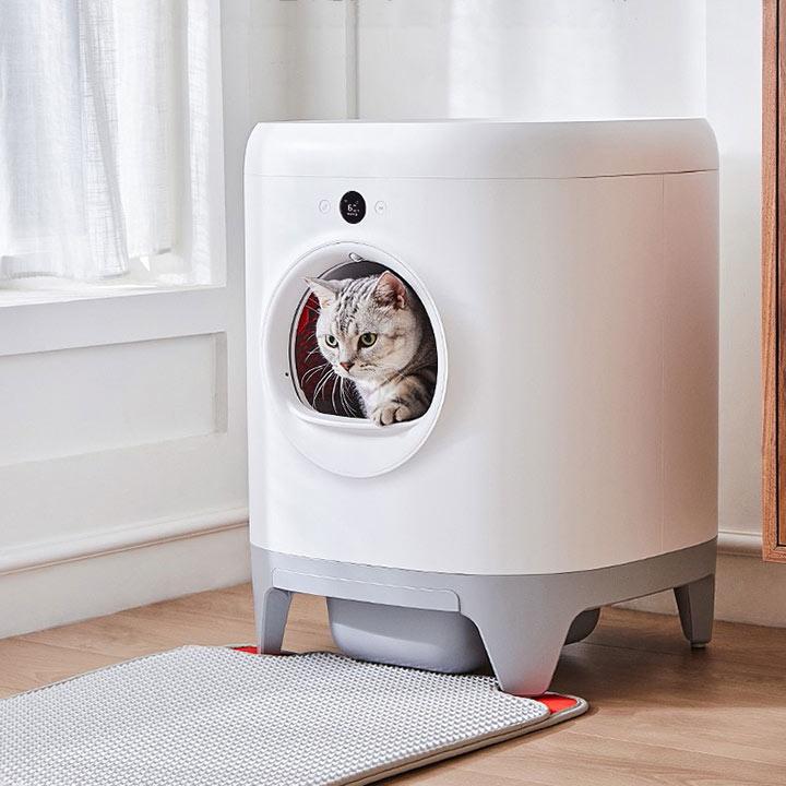 Cát vệ sinh cho mèo, khay vệ sinh, nhà vệ sinh, xẻngdành cho mèo