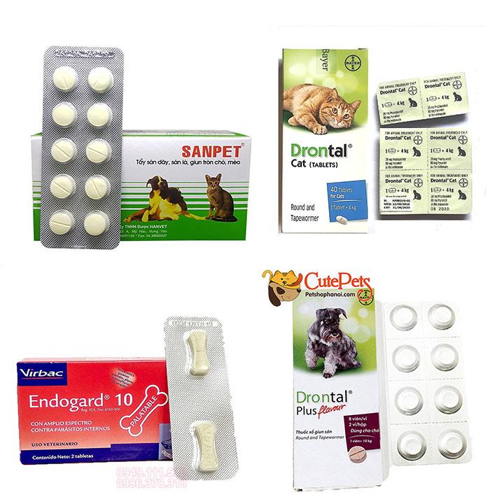 Chữa bệnh đường ruột cho chó mèo men vi sinh hỗ trợ tiêu hóa cho thú cưng