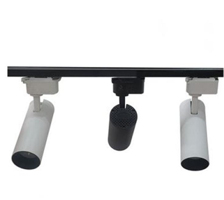 den-led-roi-ray-cob-20w-sang-vang-trang