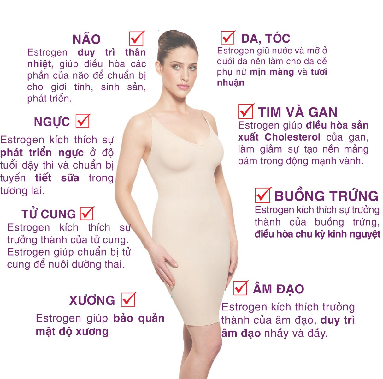 Estrogen có vai trò quan trọng đối với sức khỏe, sắc đẹp và sinh lý nữ