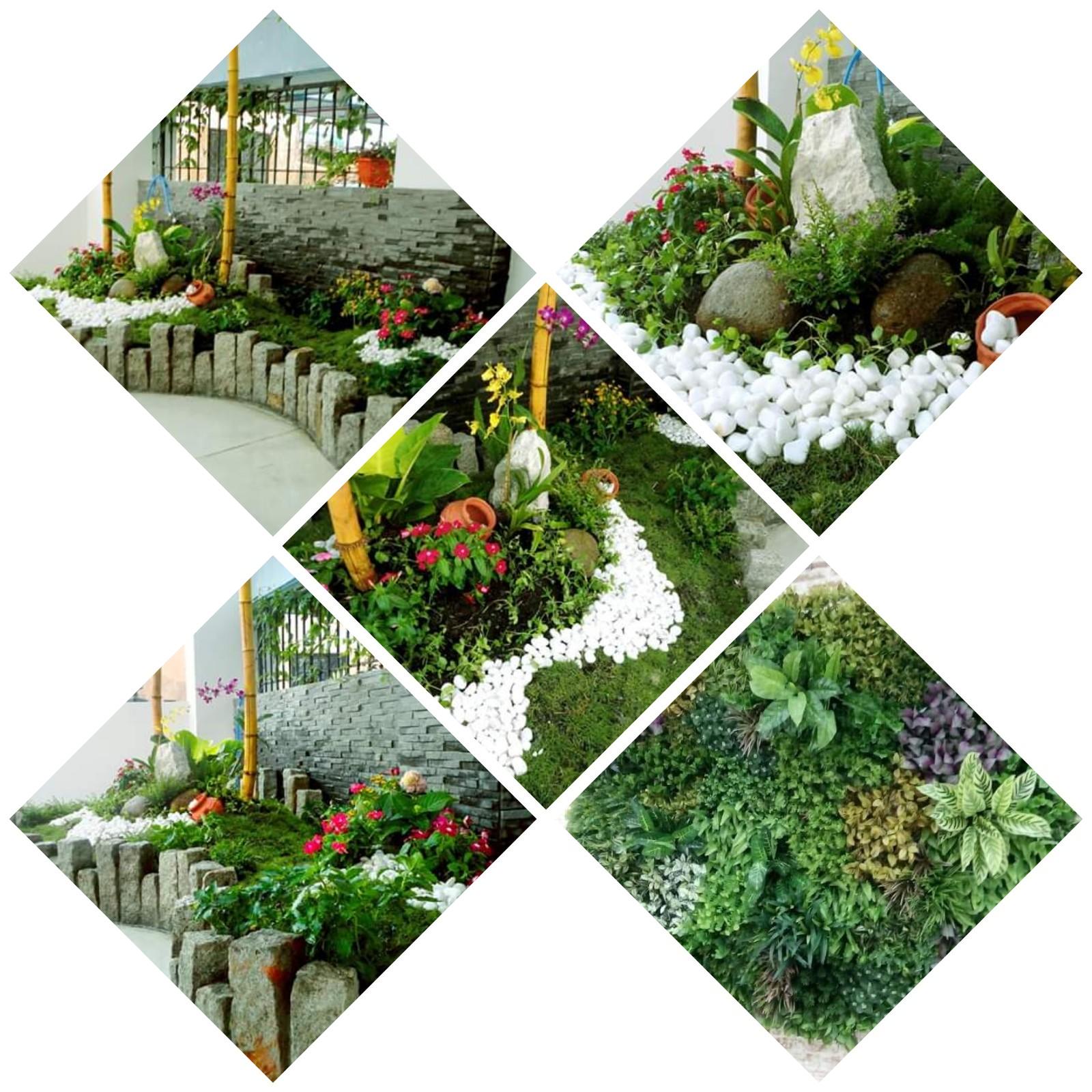 Hình ảnh vườn trên sân thượng đẹp