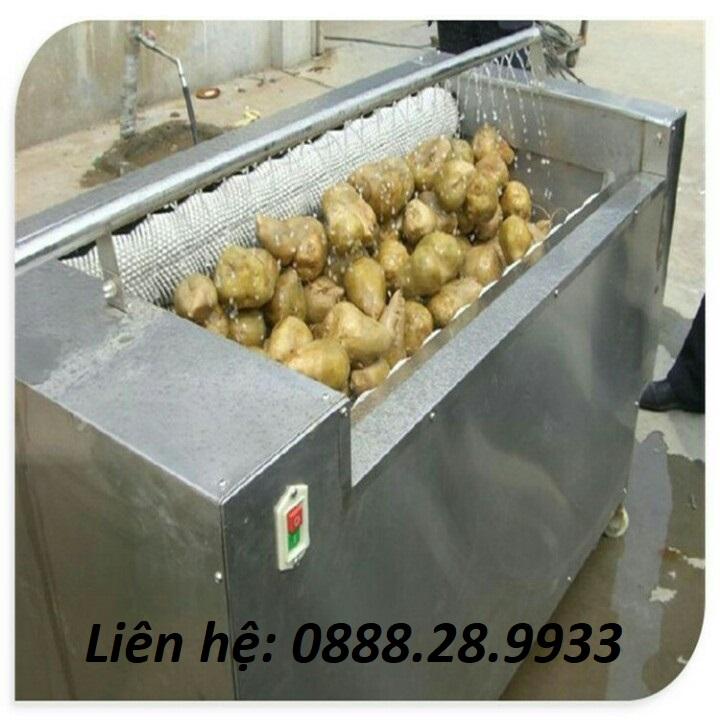 Máy rửa củ quả (nghệ, gừng, khoai tây)