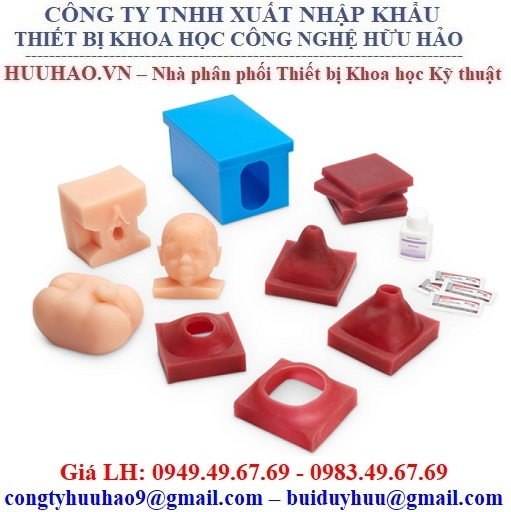Mô hình giải phẫu thai nhi Nasco SB23508U