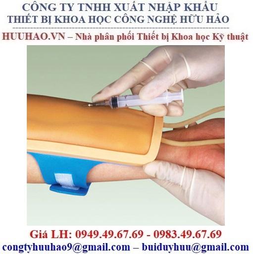Bộ Kit thực hành tiêm và lấy mẫu máu GD/HS14E