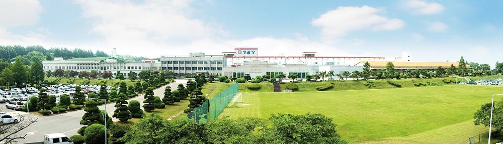 nha may nhan sam lon nhat the gioi  korea ginseng factory