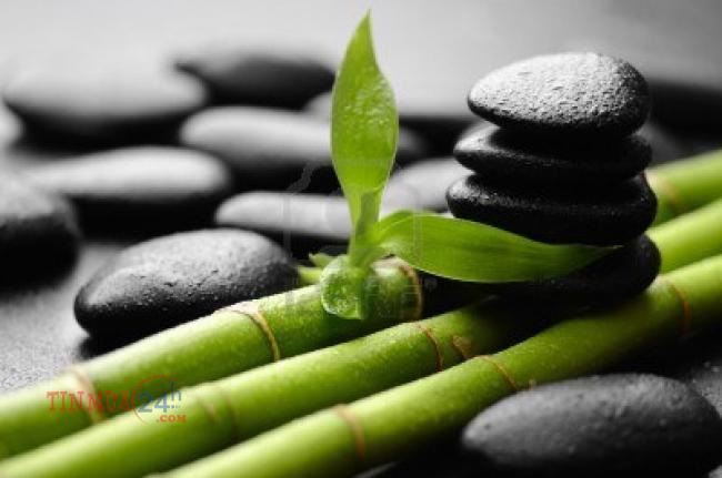 Làm thế nào để cân bằng giữa công việc - cuộc sống - 260722