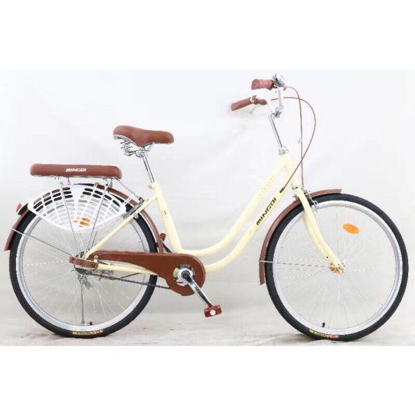 Xe đạp Mini nữ Site 24 hàng nhập khẩu cao cấp