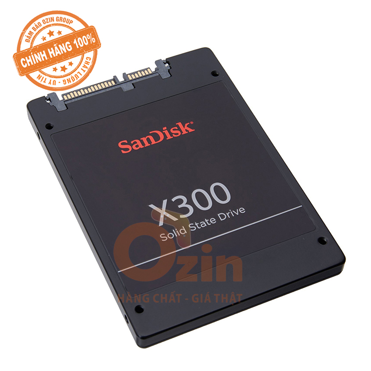 Ổ cứng SSD Sandisk 256GB  X300S