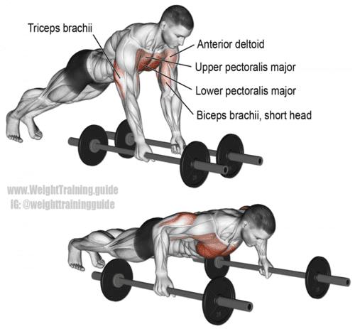 bodyweight barbell floor fly