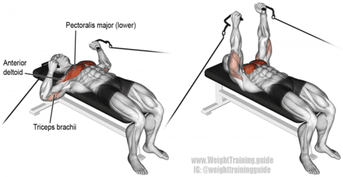 cable bench press